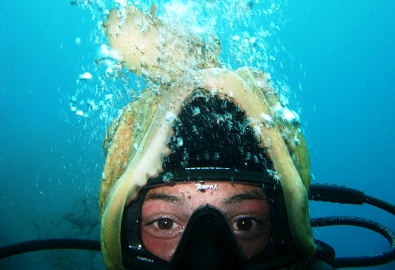 Instruktor ronjenja u turističko-rekreativnom ronjenju