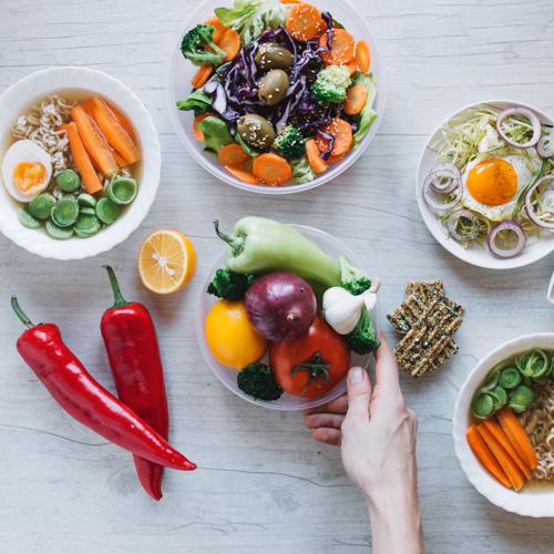 Ustanova Magistra Program Edukacija nutricionist