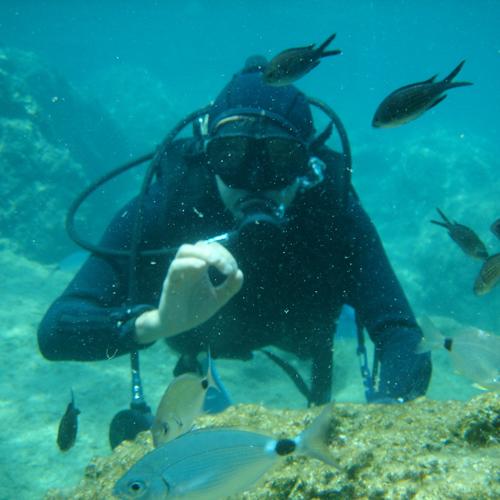 Ustanova Magistra Program Edukacija ronilac u ribarstvu